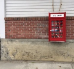 little-library-from-old-phone-booth